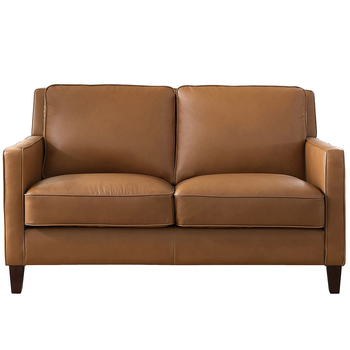 Prospera Home West Park Leather Loveseat